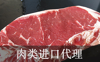 肉类进口代理